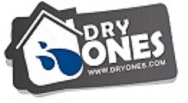 Dry Ones Restoration