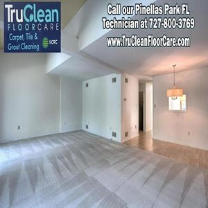 TruClean Carpet Cleaning, Tile &  Grout Cleaning - Pinellas Park