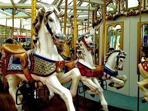 Creativity Carousel