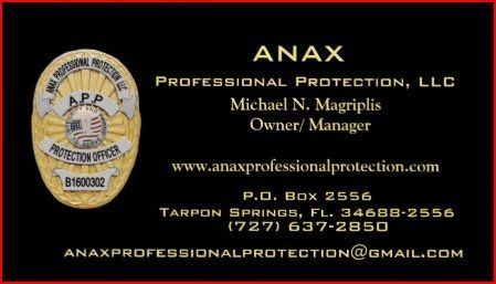 Anax Professional Protection LLC
