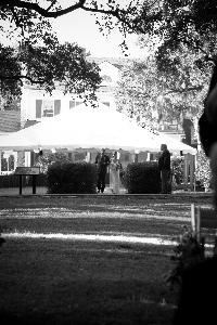 Southern Chic Weddings