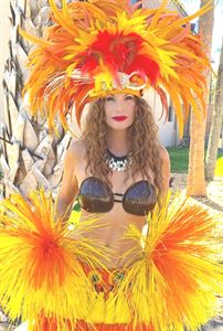 Miraj Belly Dance Hula Samba Fire and Mermaid