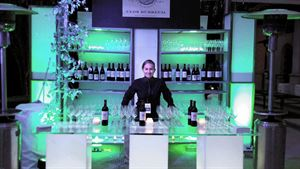 Rent a  Bartender Services