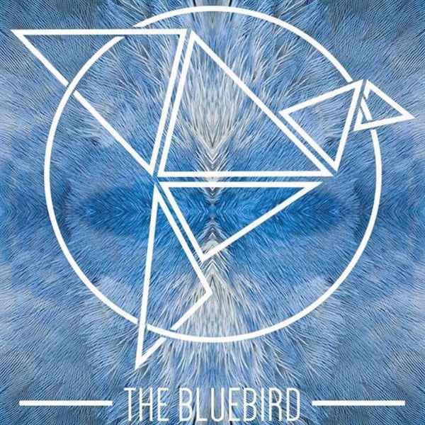 The Blue Bird Dance Club