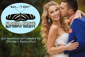 The Butterfly Estates