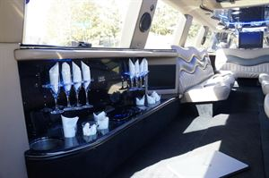 Stryker Limousine