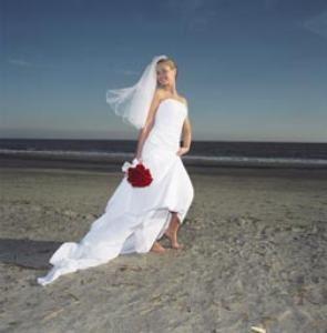 Charleston Wedding Tales