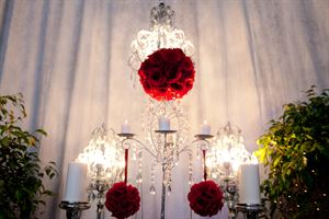 AFFORDABLE PARTY PLANNING - (Event Decorators & Planners)