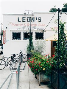 The Oyster Shed at LEON's Oyster Shop
