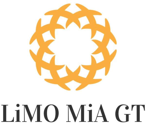 Limo Mia Ground Transportation