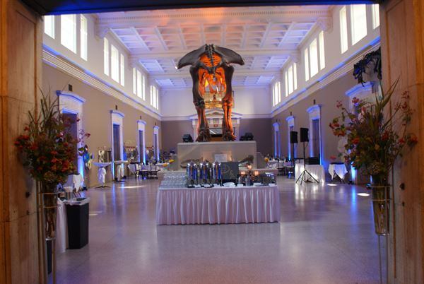 Buffalo museum of science buffalo ny wedding venue photos junglespirit Image collections