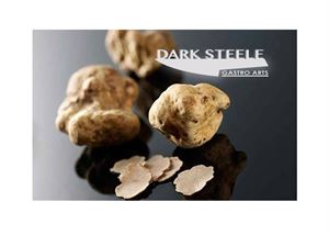 Dark Steele Gastro Arts LLC