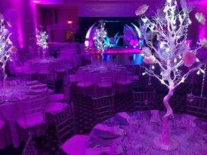 All Event Decorations and Party Rental