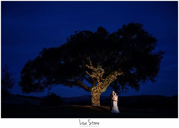 Lisa Stone Photography