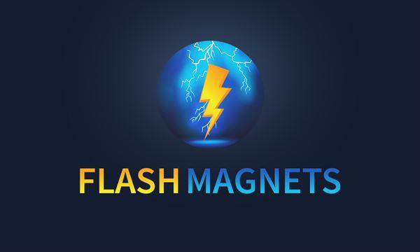 Flash Magnets LLC