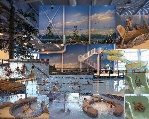 Indoor H2 0asis Aquatic Centre