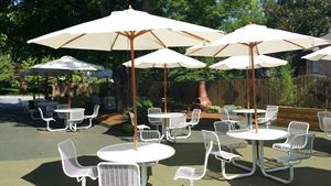 Oasis Outdoor Garden and Lounge