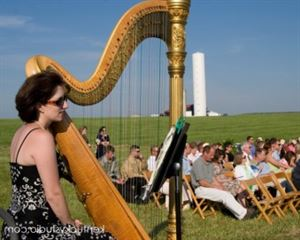 Graceful Harp