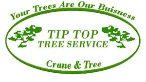 Tip Top Tree Service of Ft. Myers & Naples
