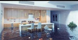 Water Damage Repair Denver