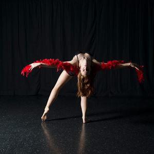 Danielle Flies Circus Artist