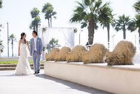 Royce Weddings & Events