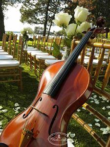 Viola Dolce (String Quartet)