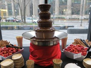 The Chocolate Fountain From In Blossom