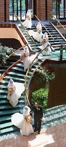Alan's Award Winning Photography