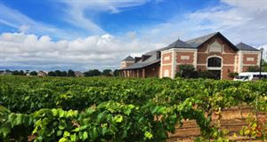 Delaney Vineyards & Winery