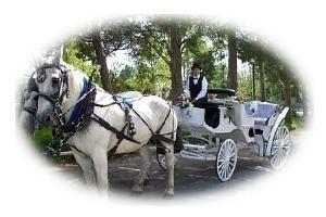 Dreamcatcher Carriage