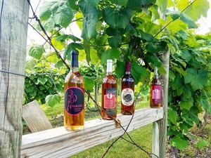 Stone Pillar Vineyard & Winery