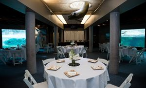 Wedding Venues In Rochester Ny 129 Venues Pricing