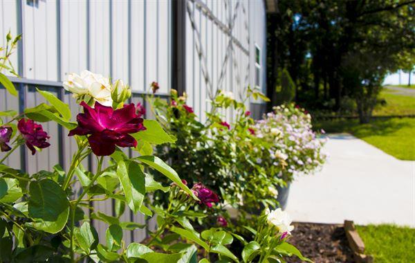 Hidden Rose Wedding Venue