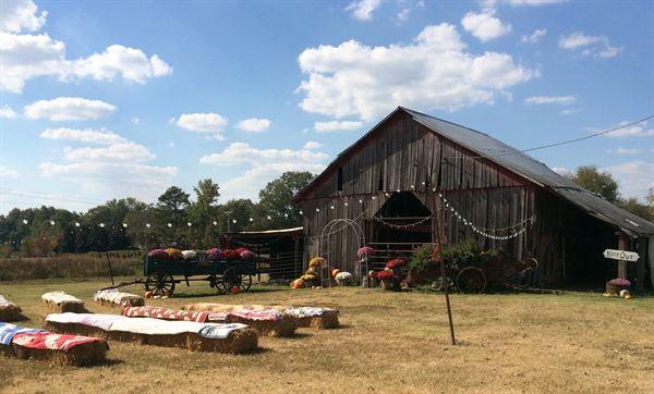 The Drop Farm