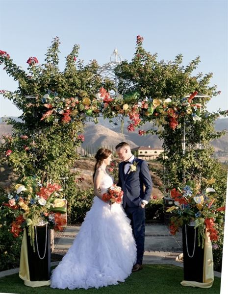 Extraordinary Wedding Arches