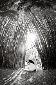 Dayna Schroeder Photography