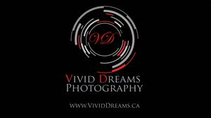 Vivid Dreams Photography + Videography