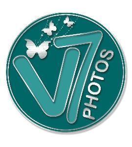 V7 Photos