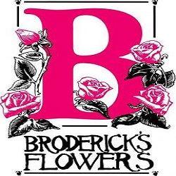Broderick's Flowers