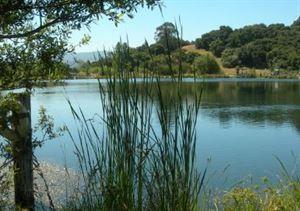 McAlpine Lake & Park