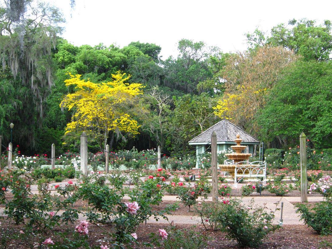 Harry P. Leu Gardens - Orlando, FL - Wedding Venue