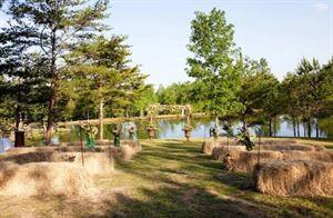 Blackberry Lane Farm