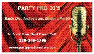 Party Pro DJ's