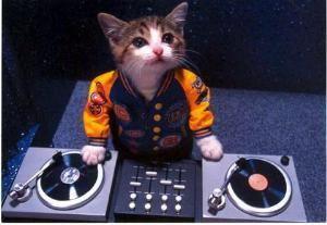 Fresh Tunes DJ Service