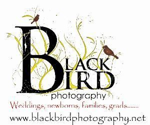 Black Bird Photography