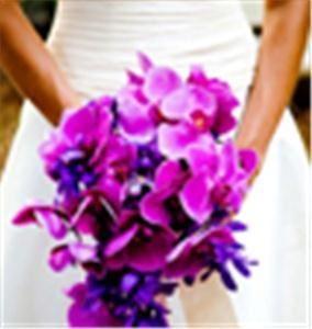 Event Jolie - Wedding & Event Planning