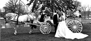 Adkins Willow Wind Carriage & Limousine Service