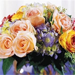 Phillip's Flowers & Gifts - Chicago & Suburbs