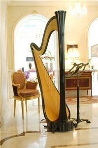 Nadia Pessoa - Harpist